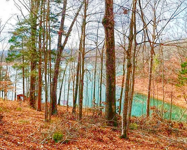 Norris Point Lots for Sale on Norris Lake